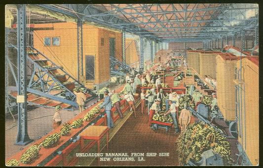 Image for UNLOADING BANANAS, NEW ORLEANS, LOUISIANA