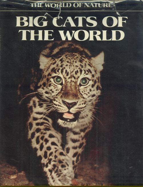 Image for BIG CATS OF THE WORLD